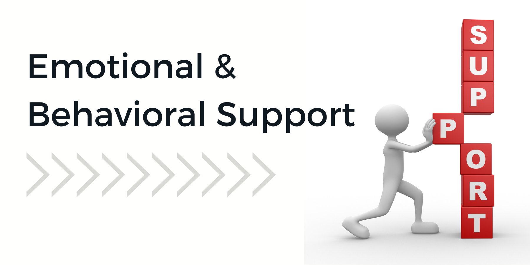 Image - emotional and behavioral support
